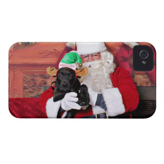 Christmas - Mixed Breed - Trey iPhone 4 Covers