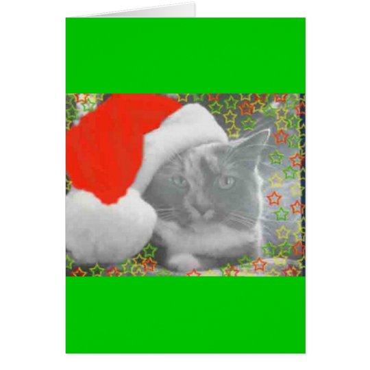 christmas molly card