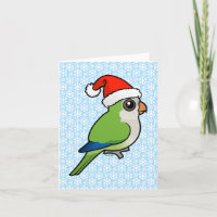 Monk Parakeet Christmas 4