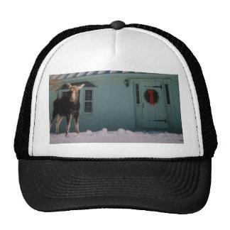 CHRISTMAS MOOSE TRUCKER HATS