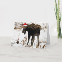 Christmas moose with duck holiday card.