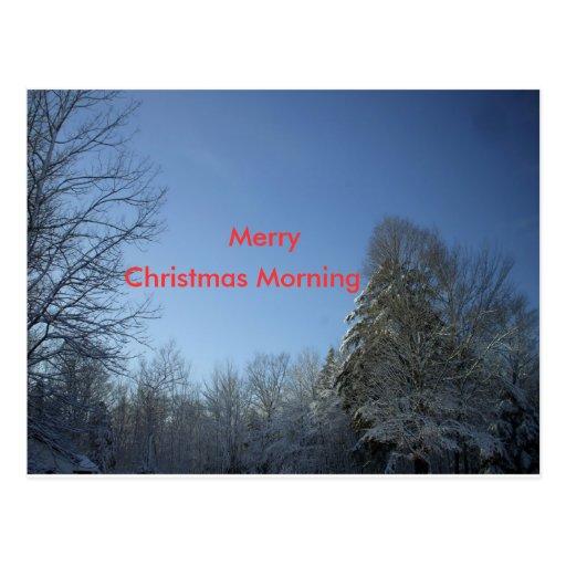 Christmas Morning Trees Post Card