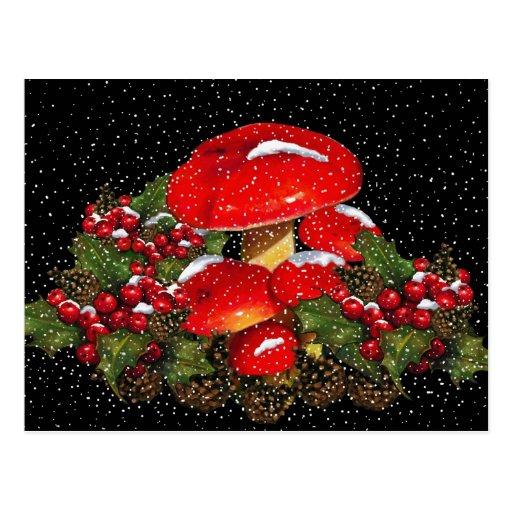 Christmas Mushroom, Toadstools, Snow, Holly Postcard