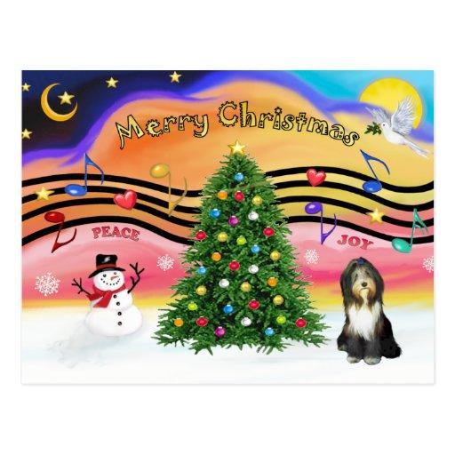 Christmas Music 2 - Bearded Collie 9 Postcard