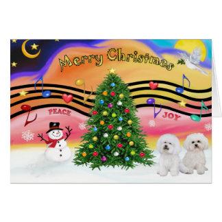Christmas Music 2 - Bichon Frise (two) Card