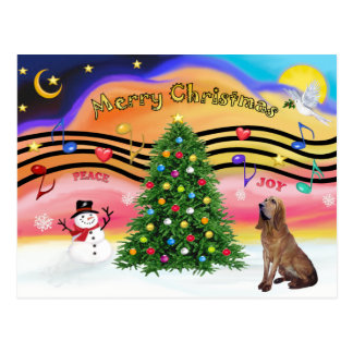 Christmas Music 2 - Bloodhound Postcard