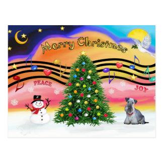 Christmas Music 2 - Cesky Terrier (gray) Postcard