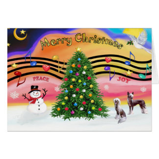 Christmas Music 2 - Chinese Crested (2 HL) Greeting Card