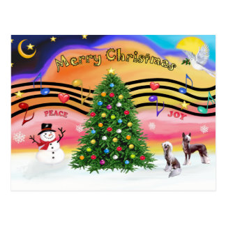Christmas Music 2 - Chinese Crested (2 HL) Postcard