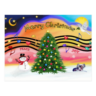 Christmas Music 2 - Chinese Crested (ld) Postcard