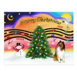 Christmas Music 2 - Collie 1 Postcard