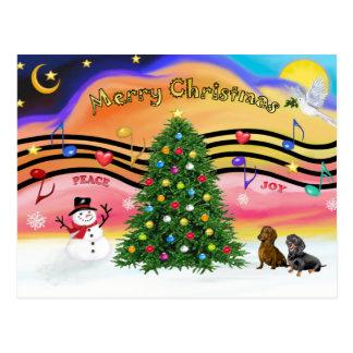 Christmas Music 2 - Dachshunds (two) Postcard