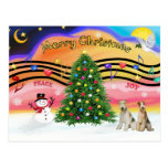 Christmas Music 2 - Fox Terriers (two Wire Haired) Post Card
