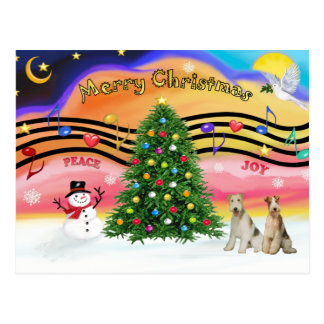 Christmas Music 2 - Fox Terriers (two Wire Haired) Postcard