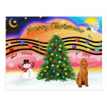 Christmas Music 2 - Poodle (apricot Standard) Postcards