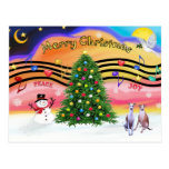 Christmas Music 2 - Whippets (two) Postcard