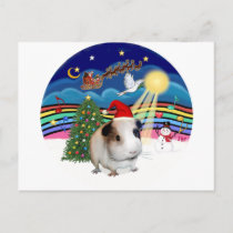Christmas Music 3 - Guinea Pig 1 (hat) Holiday Postcard