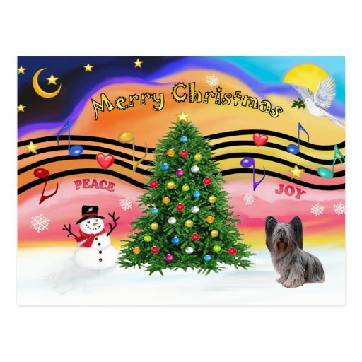 Christmas Music - Skye Terrier 2 Postcard