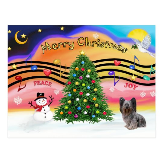 Christmas Music - Skye Terrier 2 Postcard