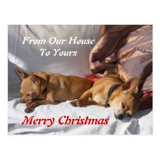 Christmas Nap Card Postcard