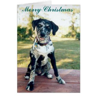 Christmas Nellie Card