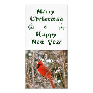 Christmas New Year Card