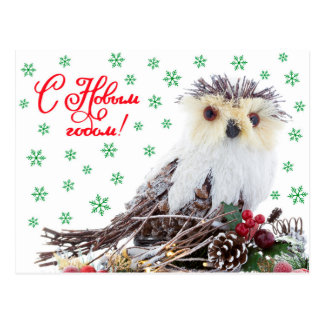 Christmas New Year Wise Owl Vintage Rustic Postcard