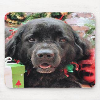Christmas - Newfoundland - Izzie Mousepad
