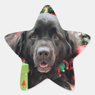 Christmas - Newfoundland - Izzie Star Sticker