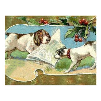 Christmas News Postcard