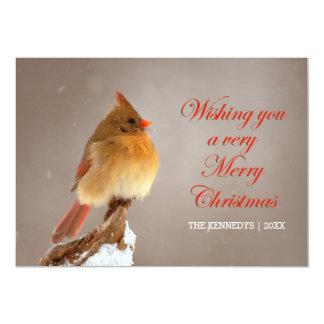 Christmas - Northern Cardinal on snowy branch Card