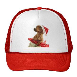 Christmas of dog - gorra