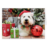 Christmas - Old English Sheepdog - Alphy Greeting Cards