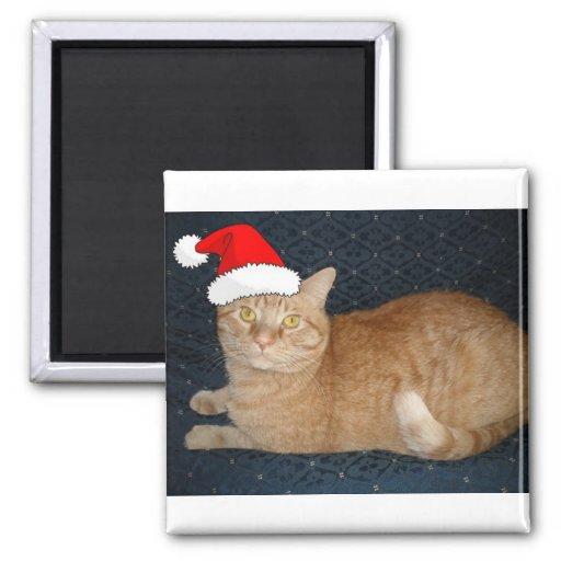 Christmas Orange Tabby Cat Refrigerator Magnets
