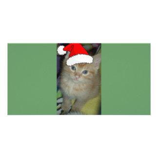 Christmas Orange Tabby Kitten Card