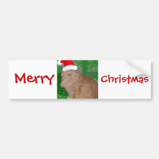 Christmas Orange Tabby Kitty Cat Bumper Sticker