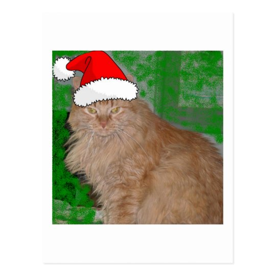 Christmas Orange Tabby Kitty Cat Postcard