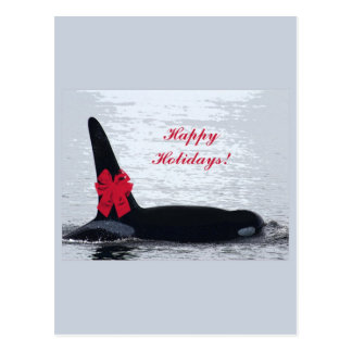 Christmas Orca Black and White Red Bow Happy Holid Post Card