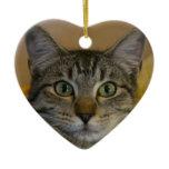 Christmas Ornament: Kitty's 1st Xmas