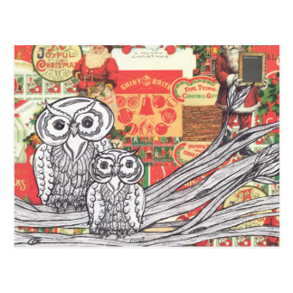 Christmas Owls 2 Postcard