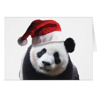 Christmas Panda Bear Card