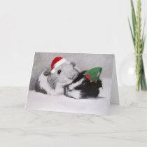 Christmas Peegs Guinea Pig Customizable Holiday Card