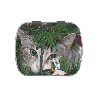 Christmas Peek-a-boo Cat ~ Jelly Belly Candy Tins