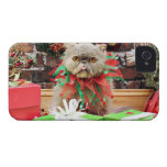 Christmas - Persian Cat - Frannie iPhone 4 Covers