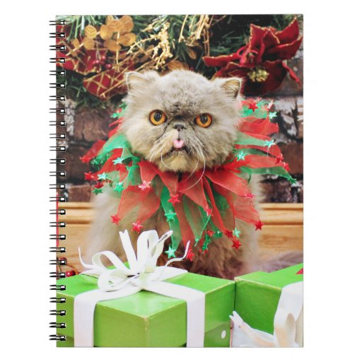 Christmas - Persian Cat - Frannie Note Books