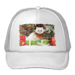 Christmas - Persian Cat - Toby Trucker Hat
