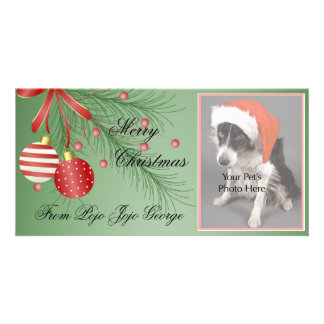 Christmas Photo Cards for your pets