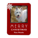 Christmas Photo Greeting From the Dog / Pet Rectangular Photo Magnet