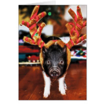 Christmas Pig Greeting Card