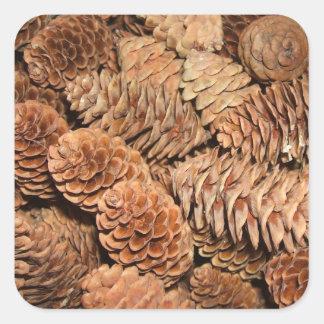 Christmas Pine Cones Square Sticker